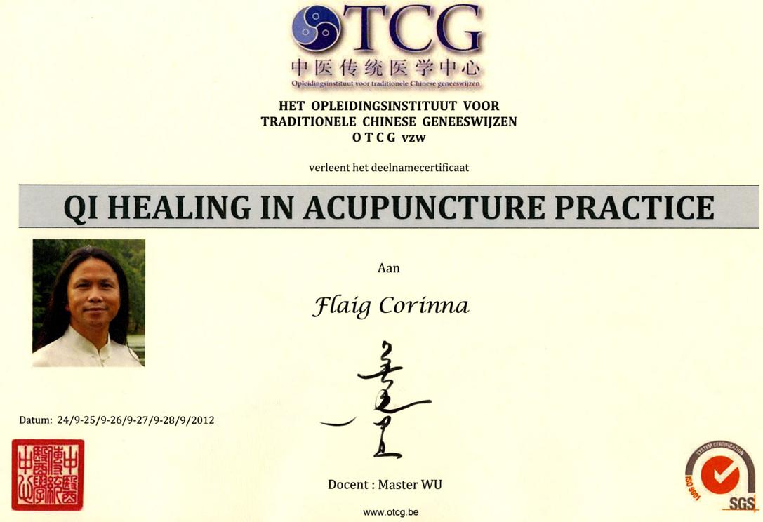 Master_Wu_Certificate