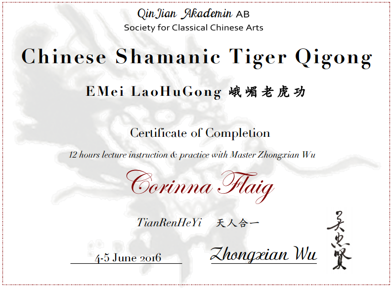 Chinese Shamanic Tiger Qigong
