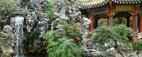 Qi Gong und Traditionelle Chinesische Medizin (TCM)