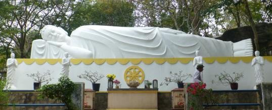 Neue Qi Gong Kurse ab Ende August